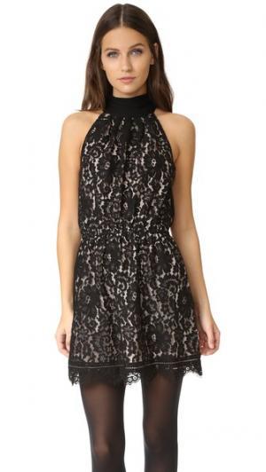 Платье Cyndi Joie. Цвет: цвет икры с бежевой подкладкой