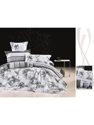 Комплект постельного белья ЕВРО сатин, рисунок 674 LA NOCHE DEL AMOR. Цвет: серый