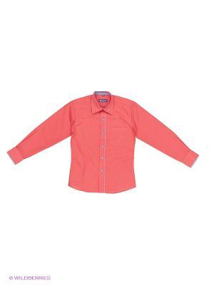 Рубашка Brostem. Цвет: коралловый