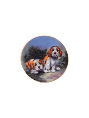 Набор тарелок декоративных на магните Забавные щенки Elan Gallery. Цвет: белый, голубой, рыжий