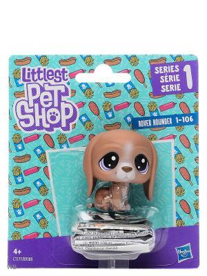 Пет Littlest Pet Shop. Цвет: коричневый