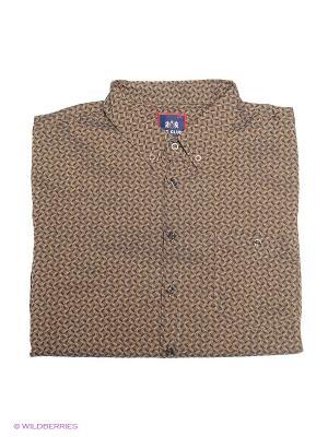 Рубашка IFC. Цвет: коричневый