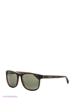 Солнцезащитные очки BLD 1624 101 Baldinini. Цвет: коричневый, темно-серый