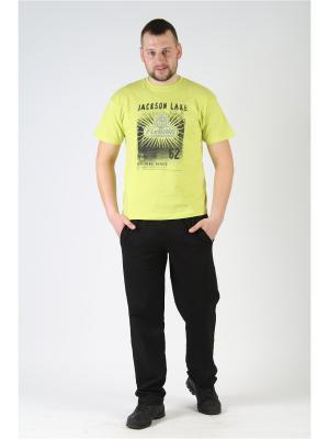 Спортивные брюки Diamond. Цвет: черный