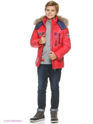 Куртка Vitacci. Цвет: красный