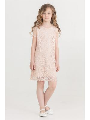 Нарядное платье для девочек Baby Steen