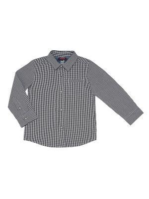 Рубашка CHICCO. Цвет: белый, коричневый, синий