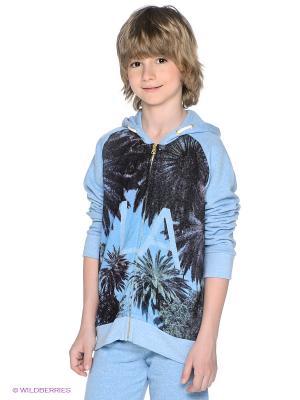 Толстовка American Outfitters. Цвет: голубой