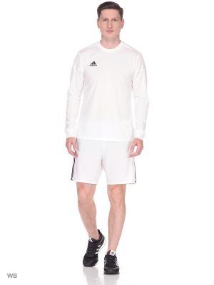 Бесшовная футболка с дл. р. муж. SQUAD 17 JSY LS WHITE/WHITE Adidas. Цвет: белый