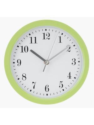 Часы настенные Цифры-завитки в зеленой оправе (22,6 см) NAST239 Mitya Veselkov. Цвет: зеленый