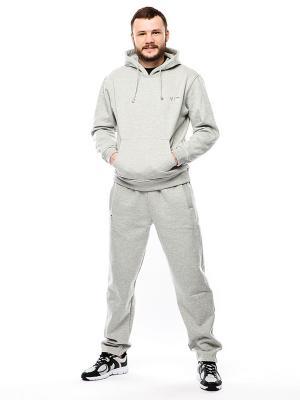 Спортивные штаны W5. Цвет: серый