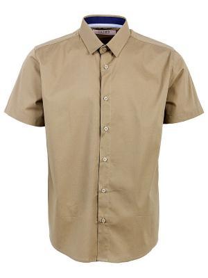 Рубашка Hazard. Цвет: коричневый