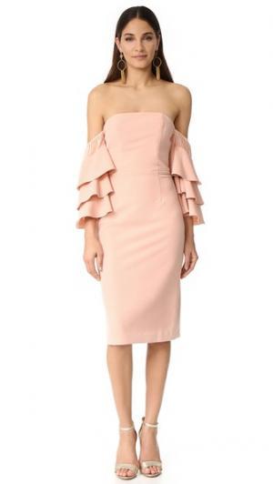 Платье Sunny с оборками Talulah. Цвет: розовый