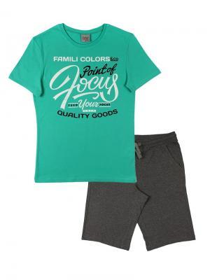 Комплект мужской (футболка, шорты) Family Colors. Цвет: зеленый