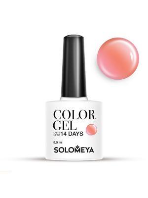 Гель-лак Color Gel Тон Fudge SCG061/Помадка SOLOMEYA. Цвет: коралловый