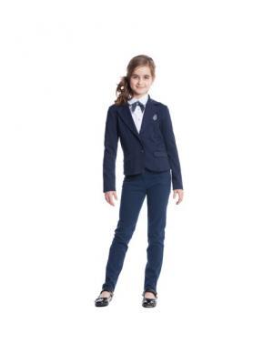 Пиджак S`Cool. Цвет: темно-синий