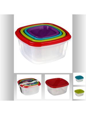 Набор пластиковых контейнеров 4 шт JJA. Цвет: темно-фиолетовый,прозрачный,красный