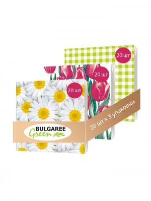 Набор Весенние Цветы из 3 упаковок трехслойных салфеток с ярким принтом, 3х20шт Bulgaree Green. Цвет: белый, желтый, розовый, салатовый