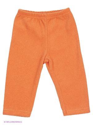 Брюки Мелонс. Цвет: оранжевый