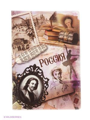 Обложка для паспорта Россия Винтаж А М Дизайн. Цвет: бордовый, коричневый