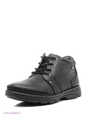 Ботинки Shoiberg. Цвет: серый, темно-серый, бронзовый