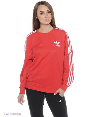 Джемпер BB SWEATSHIRT Adidas. Цвет: красный