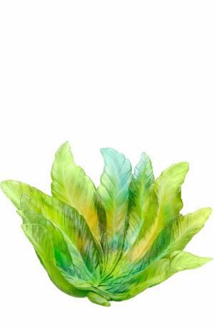 Ваза для фруктов Borneo Daum. Цвет: зеленый