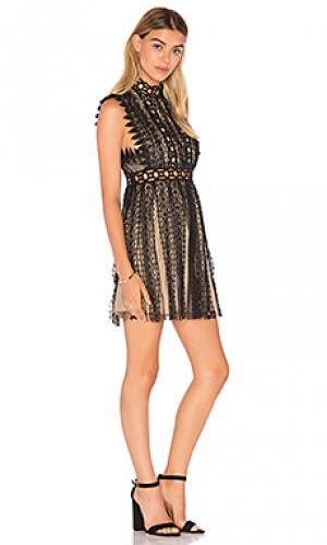 Обегающее сверху и плиссированное от пояса платье forever lace Free People. Цвет: черный