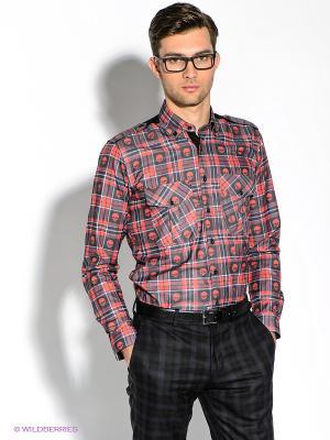 Рубашка Alex DANDY. Цвет: серый, красный