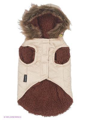 Куртка Doggy Dolly. Цвет: кремовый