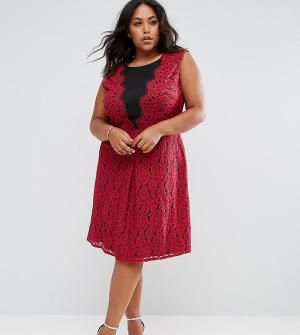 Praslin Приталенное кружевное платье. Цвет: красный
