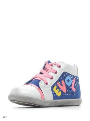 Ботинки Buddy dog. Цвет: голубой