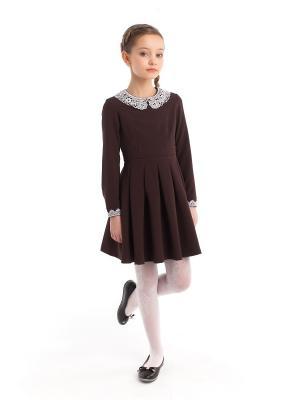 Платье коричневое с белым воротником ПКФ Успех