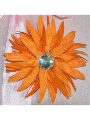 Резинка для волос Bizon. Цвет: оранжевый