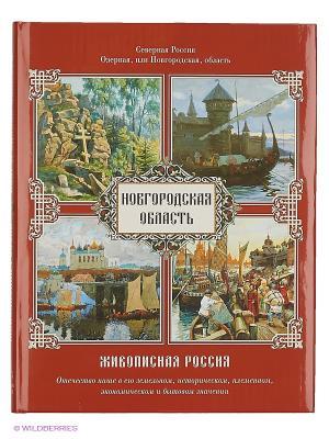 Новгородская область Белый город. Цвет: белый