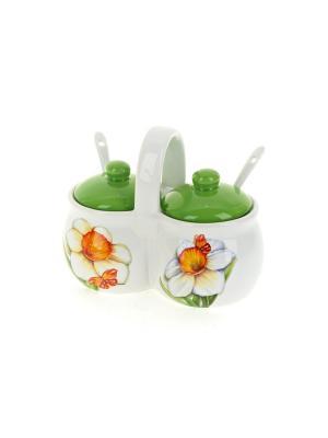 Набор банок для специй Нарцисс, Polystar. Цвет: светло-зеленый