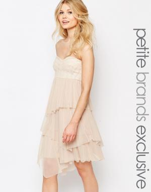 John Zack Petite Платье-бандо миди с отделкой пайетками и тюлем. Цвет: кремовый