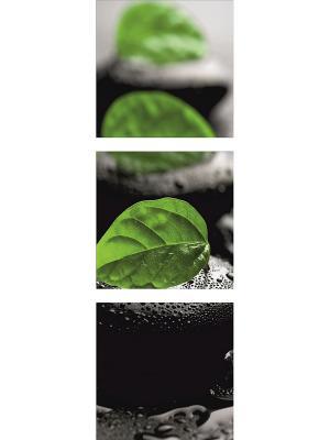 Картина модульная из квадратов 300*300мм ДСТ. Цвет: зеленый