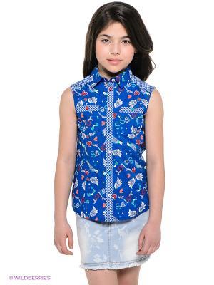 Блузка PELICAN. Цвет: синий, красный, белый