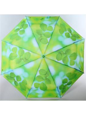 Зонт Magic Rain. Цвет: светло-зеленый, серо-зеленый