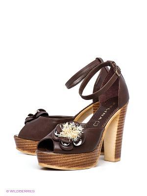 Босоножки Felina shoes. Цвет: темно-коричневый