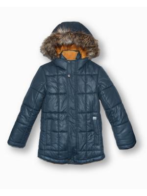 Куртка Артус. Цвет: антрацитовый