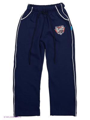Спортиные штаны DAMY-M. Цвет: синий