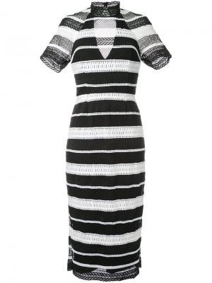 Платье миди Testa с воротником-стойкой Rebecca Vallance. Цвет: чёрный
