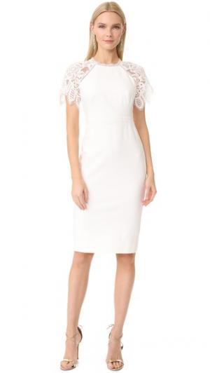 Приталенное платье-футляр с кружевными рукавами Lela Rose. Цвет: белый