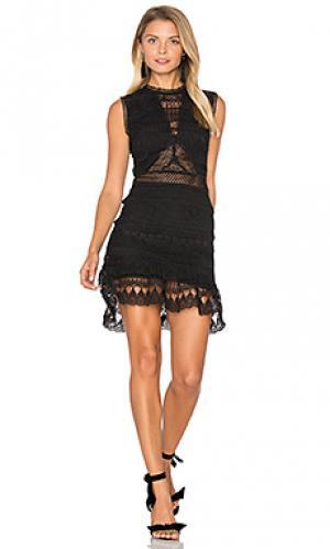 Кружевное мини-платье joy Karina Grimaldi. Цвет: черный