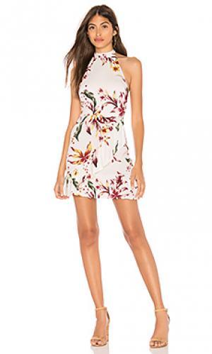 Платье холтер deon Clayton. Цвет: белый