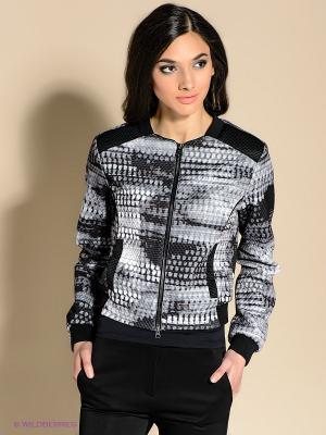 Куртка 18CRR81 CERRUTI. Цвет: серый, черный
