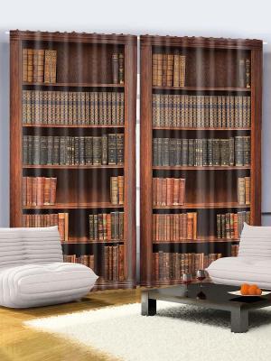 Комплект фотоштор Библиотека в старом замке, 290*265 см Magic Lady. Цвет: темно-коричневый, серый, коричневый, темно-бежевый, черный