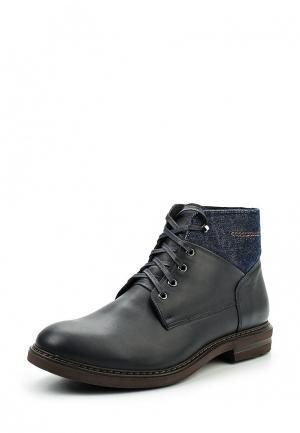 Ботинки Conhpol Dynamic. Цвет: синий